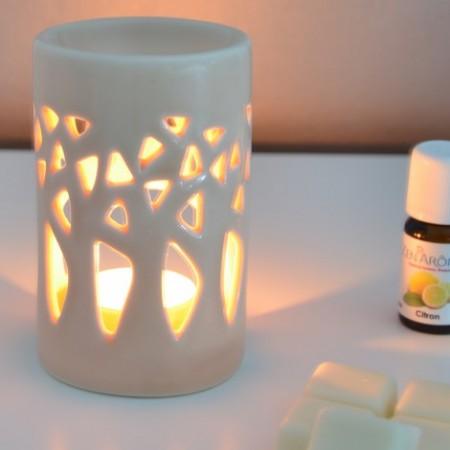 Burn ceramic fragrance Forest
